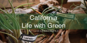 california_life_with_green_01.jpg